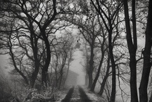 Gothic/Haunted  / by Michelle Cromer