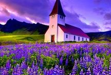 Pretty Little Churches / Little churches from around the world. / by Meredith Thompson Brooks