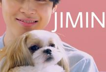 BTS ♡Jimin♡ / I love his smile(〃ω〃)
