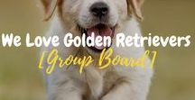 We Love Golden Retrievers [Group Board] / This group board is all about Golden Retrievers only. Please DO NOT pin other dog breeds. Thank you!