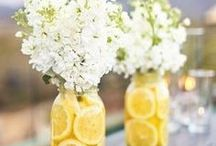 Backyard Weddings / Getting married in your family's backyard? Here are some awesome ideas to save you money and create a gorgeous wedding, too!