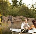 Outdoor Park Weddings / Amazing ideas for your outdoor wedding! Whether you're getting married in a city, state, or national park, get inspiration for your park wedding.