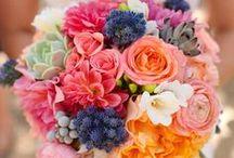 Flowering Fun / by Necole Kell