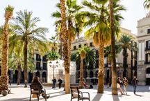 La Vida Loca à Barcelone
