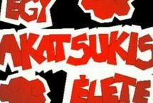 Akatsuki ^3^
