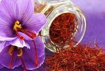 Saffron more than gold