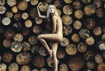 wood. / by Alyssa Glaspie