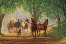 Natural Horsekeeping & Training / Ways of training and taking care of horses that are in line with their natural behavior and instincts.