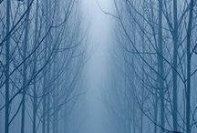 world BLUE  / by ilvi