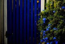 gardens / by ilvi