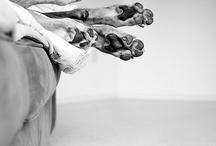 paw. / by Stefania Mancini