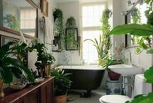 decor / Home steeze / by Linda N