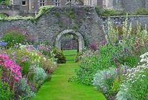 Local Treasures / Places to visit near Perth Scotland / by Kimberley Cameron
