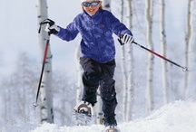 Adventures and Snowshoeing / Snowshoe Delight / by Sweet T