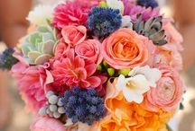 Blooms / Beautiful #blooms