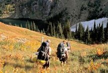 Hiking with Timberland / All your hiking needs from Timberland