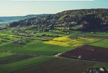 Property land and housing / Perumahan yang terjangkau dengan fasilitas lingkungan menawan adalah impian setiap orang