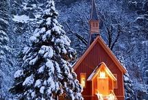 Christmas / by Mari Jackson