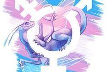 Terrific Transgender