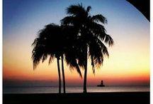 Grand Cayman Island Life