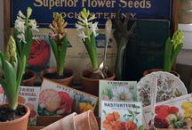 Vintage Seed Boxes and Gardening things