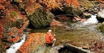 Fly Fishing Rivers / Fly fishing photos for rivers, streams and maybe a few lakes.  Fresh water photos.  #flyfishing #flyfishnation #flyfish #rivers #lakes #streams #trout #salmon