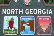 North Georgia Coasters