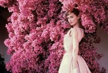 Iconic Hollywood Starlets / Iconic Hollywood starlets from past eras