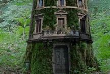 Tree Houses / Tree Houses - wouldn't it be nice? / by Chellie Hailes