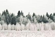 Winter love Christmas!!