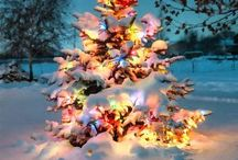 X-mas / Hoe mooi kerstmis kan zijn. In vele vormen en kleuren. Hierbij mijn kijk op het ultieme kerstgevoel. Hoe ziet jou kerst eruit?