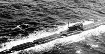 """Submarines: Echo II class (Project 675) / The Echo II class SSGN (Project 675 class) were built at Severodvinsk (18 vessels) and Komsomolsk (11 vessels) between 1962 and 1967 as anti-carrier missile submarines. The Echo II class carried eight P-6 (SS-N-3a """"Shaddock"""") anti-ship cruise missiles mounted in pairs above the pressure hull.To fire the missiles, the ship had to surface and the missile was elevated to 15 degrees. The Echo II class also had fire control and guidance radar."""