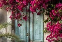 19- Doors / by Katayoon Moghaddam- Soroush