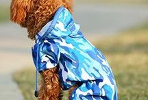 Dog Raincoats