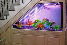 Aquarium Decor and Sand
