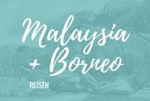 ✈ Malaysia & Borneo | Reisen / Hier findest du Tipps und Inspirationen für deine Reise nach Malaysia & Borneo: Kuala Lumpur, Jalan Alor, Pulau Perhentian, Kuching, Bako NP, Mulu NP, Kota Kinabalu, Penang, Langkawi