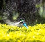 Drainage & Irrigation Solutions