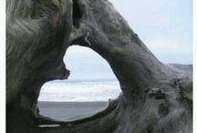 Beach Lo♥e / by Tristan Christensen