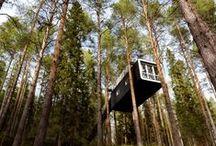 Tree Houses / A refugee / by Patty Dijigov