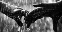 Regen. Rain. / Regenachtig weer. Rainy weather.