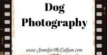 Dog photography / Inspiration, ideas, poses, and instruction for photographing dogs or puppies.