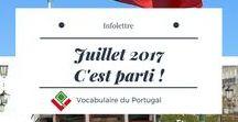 Infolettres & Blog de Vocabulaire du Portugal / Infolettres de Vocabulaire du Portugal pour suivre l'actualité autour de l'apprentissage du vocabulaire portugais européen vraiment utile, grâce à des formations par email, sans efforts, destinés aux francophones | Vocabulaire du Portugal