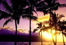 Sunrises & Sunsets / Beautiful Hawaiian sunsets and sunrises, nothing else!  #hawaii #sunset / by Discover Hawaii Tours