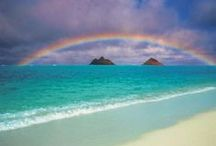 Rainbows / In Hawaii, you see at least one rainbow a day! / by Discover Hawaii Tours