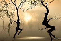 Tree People