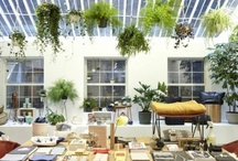 At Home with Steven Alan
