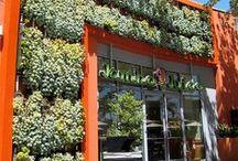GREEN Wall / Verticaal garden....Living wall... Živé stěny.