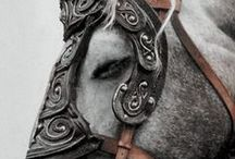 Trevelyan family [Dragon Age] / Board for the Trevelyan family (Xalynir)   Father : Callan   Mother : Astyne   Brother and sisters : Anna, Calysta, Elden