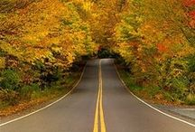 on the road / bicycles, motorcycles, cars,