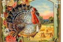 THANKSGIVING / by Joan Anderson